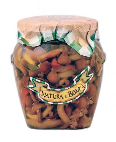 Funghi Chiodini/Chiodini Mushroom
